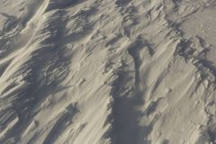 雪幻想在森林里 免版税库存图片