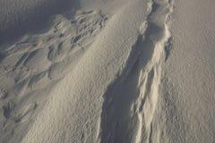 雪幻想在森林里 库存图片