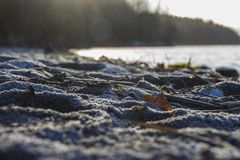 雪或沙子? 免版税库存图片