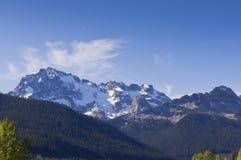 雪拂去灰尘的山峰和森林 免版税库存图片