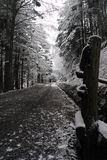 雪方式 免版税图库摄影