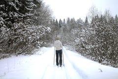 滑雪旅行在冬天森林里 图库摄影