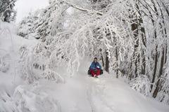 雪旅行 免版税库存图片