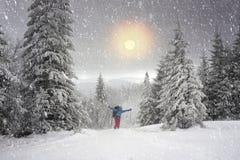 雪旅行 库存图片