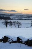 雪日落冬天 库存图片