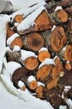 雪木头树干 免版税库存照片