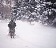 雪机器 库存照片