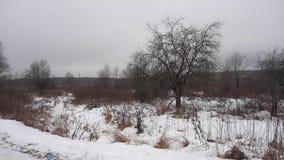 雪村庄乘坐了与少量被放弃的木议院 影视素材