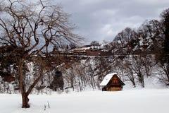 雪村庄 免版税图库摄影
