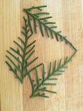 雪松柏在木背景的叶子三角 免版税库存照片