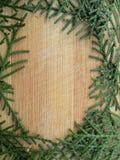 雪松柏在木背景的叶子框架 免版税图库摄影