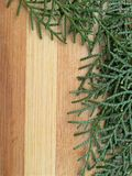 雪松柏在木背景的叶子边界 库存图片
