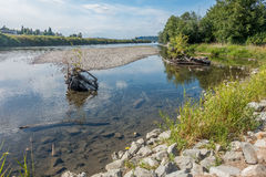 雪松河在伦顿 免版税图库摄影