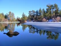 雪松湖在冬天 库存图片