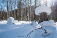 雪枕头 库存照片