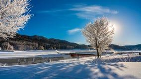 雪树风景山 免版税库存图片