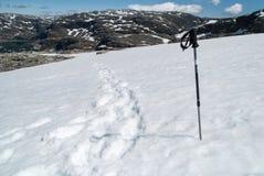 滑雪棍子 库存图片