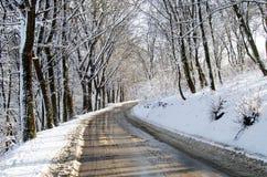 雪森林,森林公路,冬天森林,冬天木头 免版税库存照片