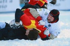 雪橄榄球国际TARVISIO 库存照片