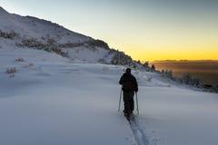 滑雪游览 免版税库存照片
