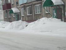 雪漂泊 库存图片
