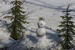 雪球 库存照片