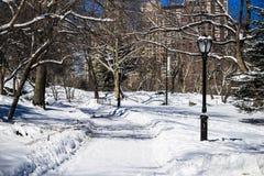 雪的中央公园 库存照片