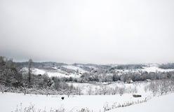 雪的农田 免版税库存图片