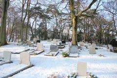 雪的墓地 库存图片
