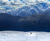 雪的孤立房子,山森林, Svaneti,乔治亚 库存照片