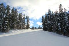 滑雪的山 库存图片