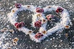 雪的心脏与玫瑰的 免版税库存图片
