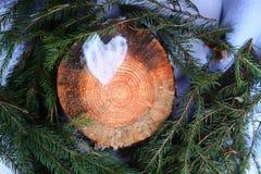 雪的心脏在树桩的和杉树在秋天公园绿化分支 库存照片