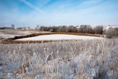 雪的池塘 库存照片