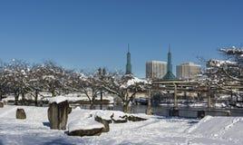 雪的波特兰 免版税库存照片