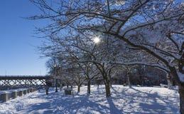 雪的波特兰 库存图片