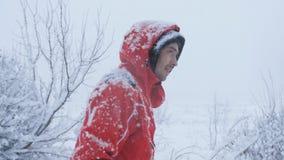 雪的男性旅客是在森林边缘 股票录像
