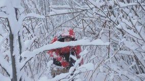 雪的男性旅客走在积雪的森林的 股票视频