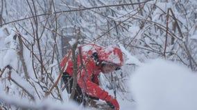 雪的男性旅客走在积雪的森林的 影视素材