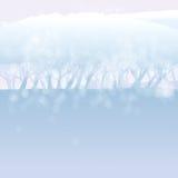 雪的白色森林 图库摄影