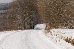 雪的神仙的冬天森林 花雪时间冬天 重的冬天雪秋天 在雪的冬天结构树 与锡的美好的冬天风景 免版税图库摄影
