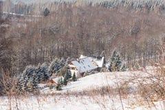 雪的神仙的冬天森林 花雪时间冬天 重的冬天雪秋天 在雪的冬天结构树 与锡的美好的冬天风景 免版税库存照片