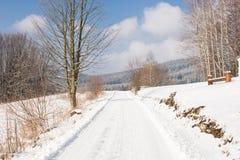 雪的神仙的冬天森林 花雪时间冬天 重的冬天雪秋天 在雪的冬天结构树 与锡的美好的冬天风景 免版税库存图片