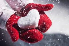 雪的重点 免版税库存图片