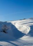 雪的颜色 库存照片