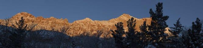 雪的5锡安国家公园 图库摄影