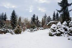 雪盖的美丽的冬景花园 免版税图库摄影