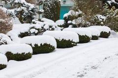 雪盖的美丽的冬景花园 库存图片