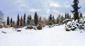 雪盖的美丽的冬景花园 图库摄影