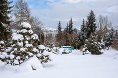 雪盖的美丽的冬景花园 库存照片